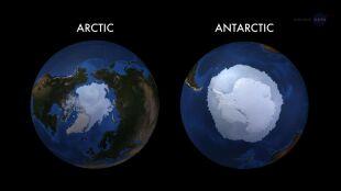 Arktyka i Antarktyda: ziemskie Yin i Yang. Ich reakcje na globalne ocieplenie są skrajnie różne