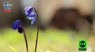 08.04 | Wiosna okiem widzów